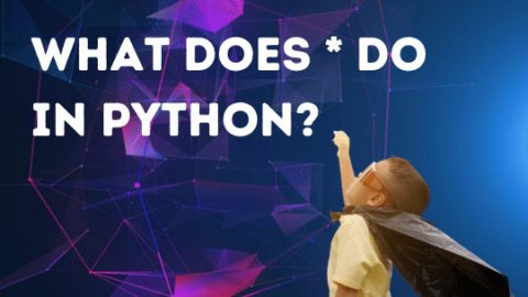 What does asterisk do in Python