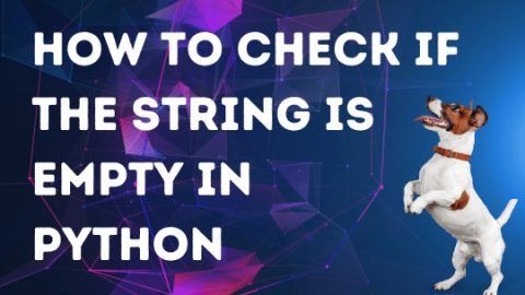 How to Check if the String is Empty in Python