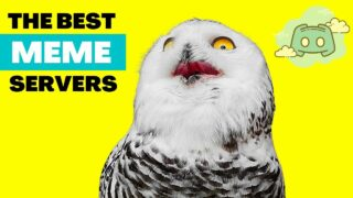 The 9 Best Discord Meme Servers