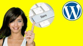 How to Save on WordPress