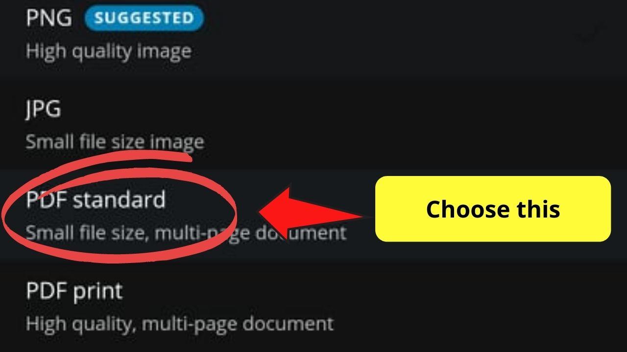 Choosing PDF Standard