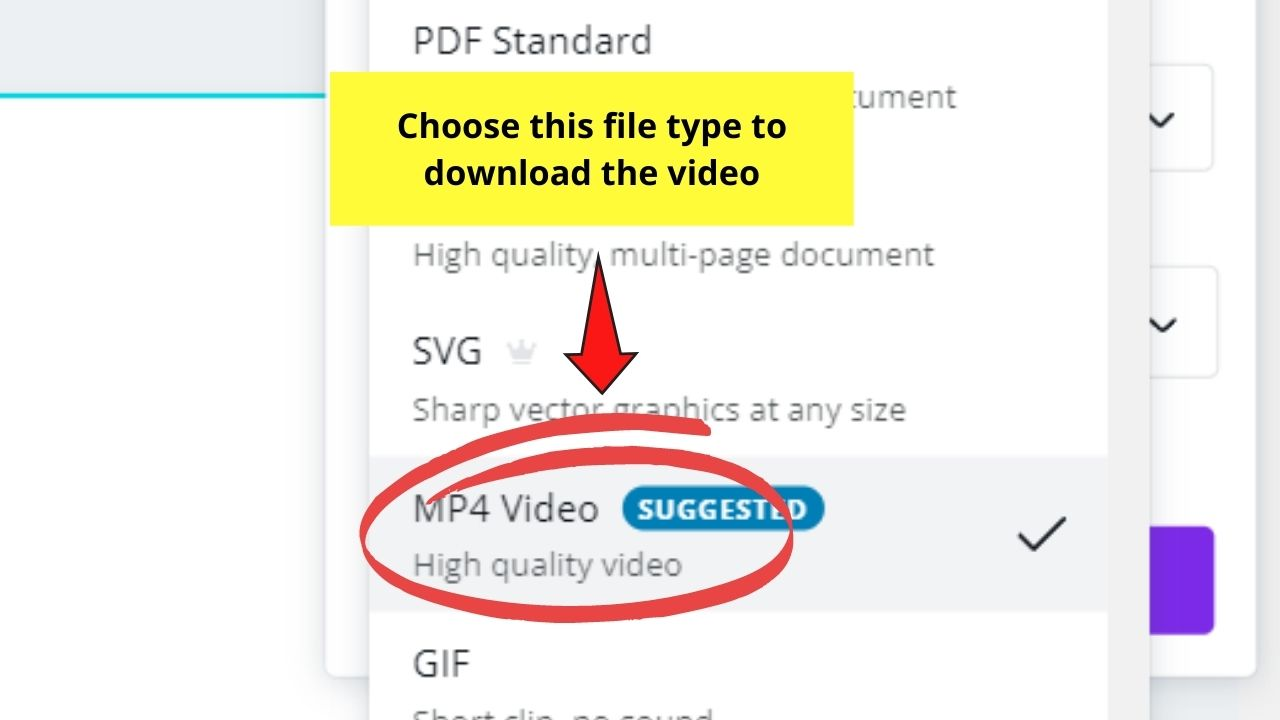 Choosing MP4 Video Format