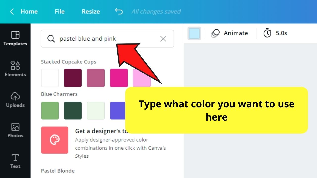 Typing Color on Search Bar