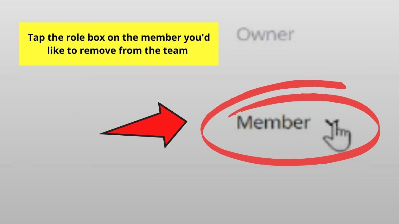 Clicking on Member's Role Box