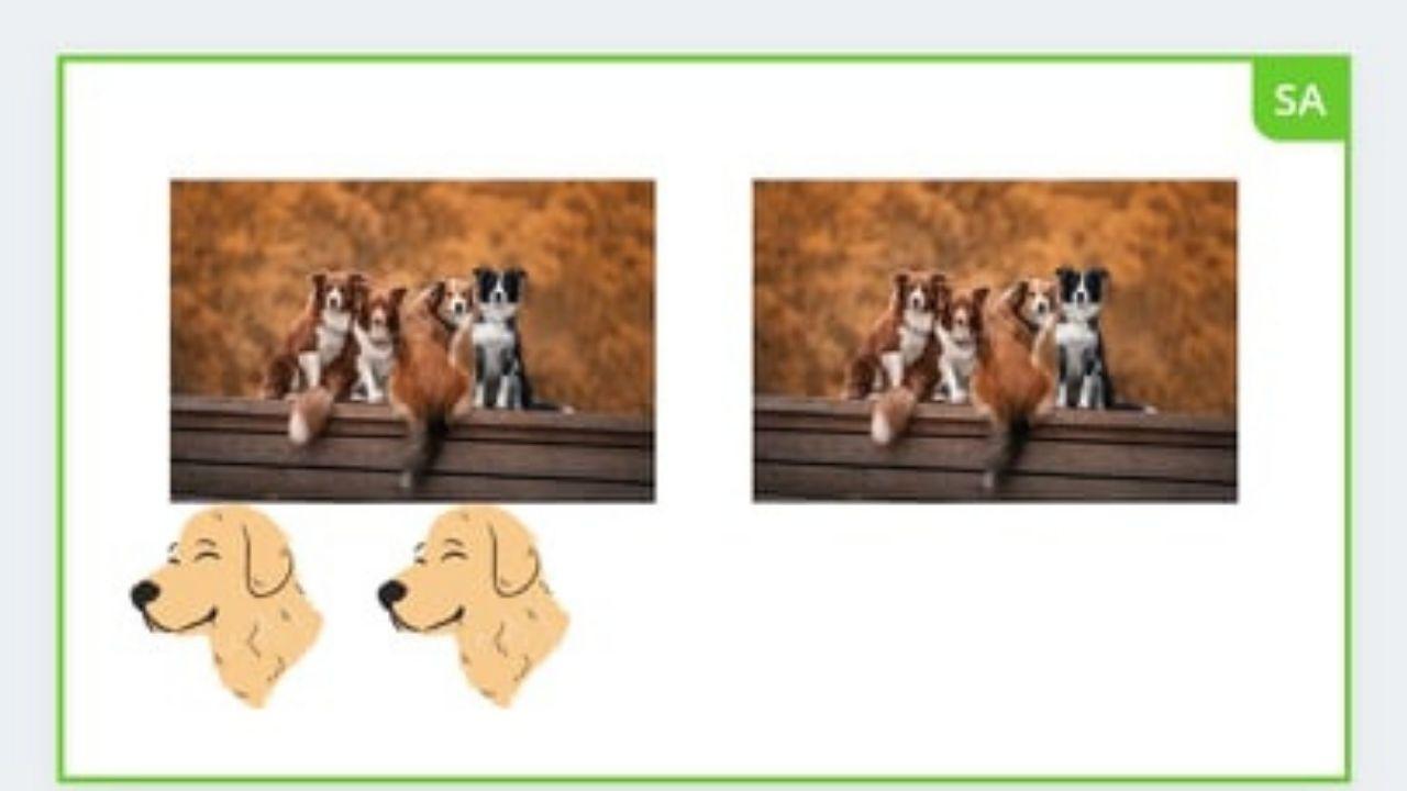 Duplicating Photos