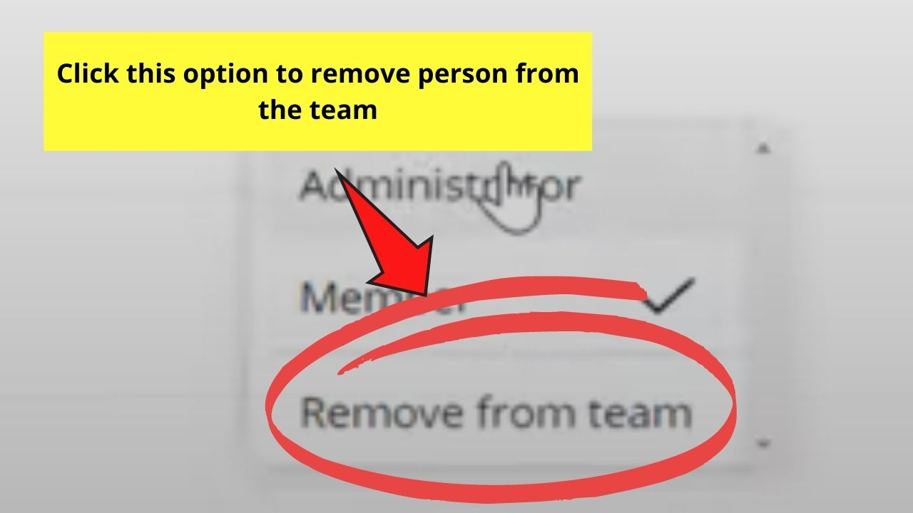Removing Member from the Team